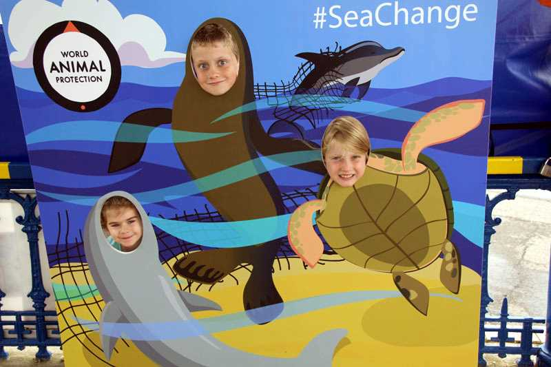 ghost fishing, sea change, charity fundraising, campaign, face in hole board