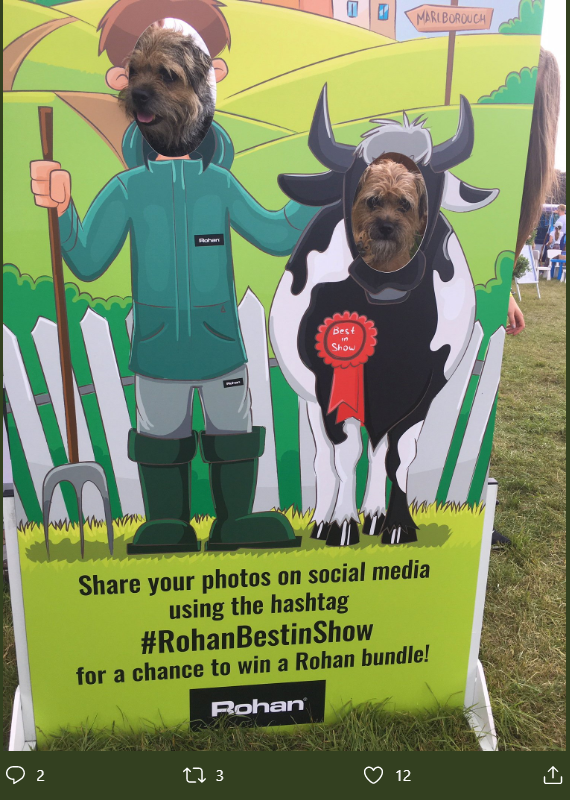 Rohan_BestInShow photo cutout board