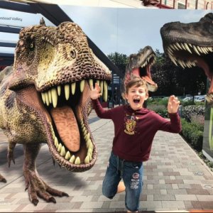 Dinosaur theme photo boards
